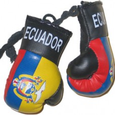 Ecuador Flag Mini Boxing Gloves