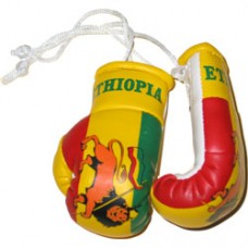 New Design Ethiopia Flag Mini Boxing Gloves