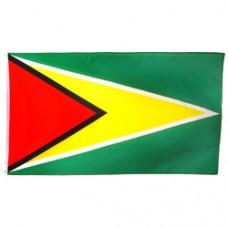 Guyana 3 feet X 5 feet polyester flag