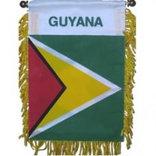Guyana Mini Banner