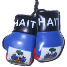 Haiti Flag Mini Boxing Gloves
