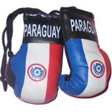 Paraguay flag mini boxing gloves