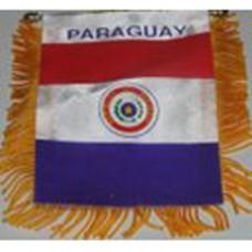 Paraguay flag mini banner