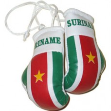 NEW Design Suriname flag mini boxing gloves
