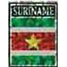 Suriname flag 4X3 inch decal