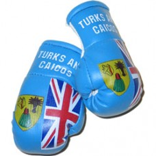 NEW Turks and Caicos mini flag boxing gloves