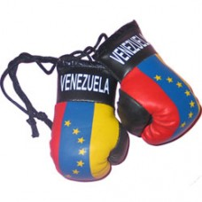 Venezuela Flag Mini Boxing Gloves