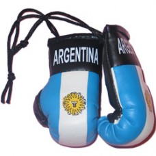 Argentina Flag Mini Boxing Gloves