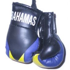 Bahamas Flag Mini Boxing Gloves