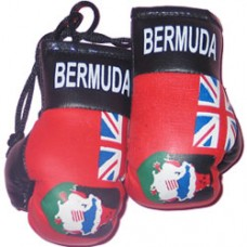 Bermuda Flag Mini Boxing Gloves