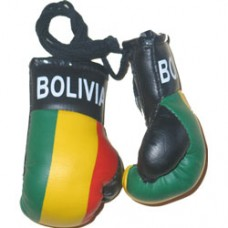 Bolivia Flag Mini Boxing Gloves