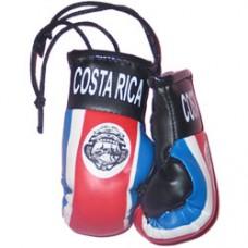Costa Rica Flag Mini Boxing Gloves