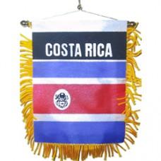 Costa Rica Mini Banner