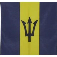 Barbados flag 100% Cotton Bandana